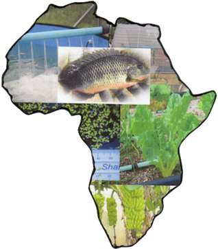 Aquaculture And Aquaponics Systems And Principles